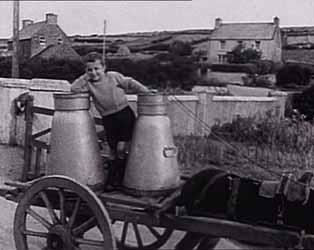 Irish Film Institute The Village